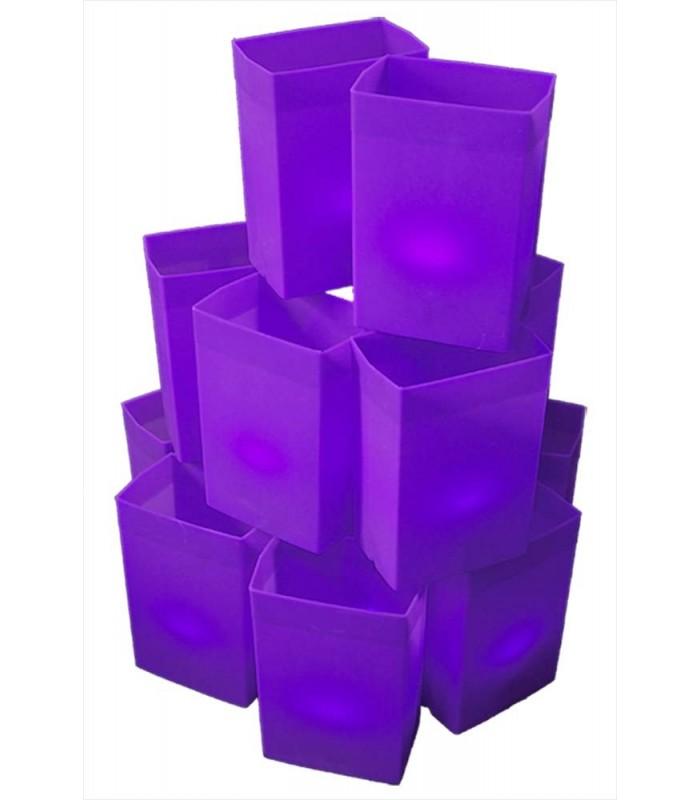 Purple Relay Luminaries